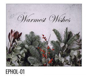 EPHOL-01