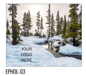 EPHOL-03